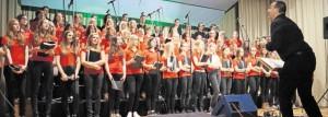 Chorleiter Wolfgang Ziegler animierte seine 62 Sängerinnen und Sänger immer wieder zu Höchstleistungen. Selbst ohne Blick in die Notenhefte boten sie Popsongs auf hohemNiveau. Bilder: du